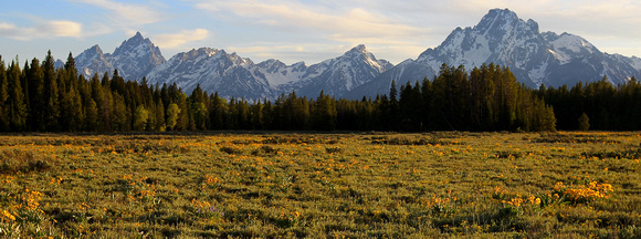 Grand Tetons / Valley